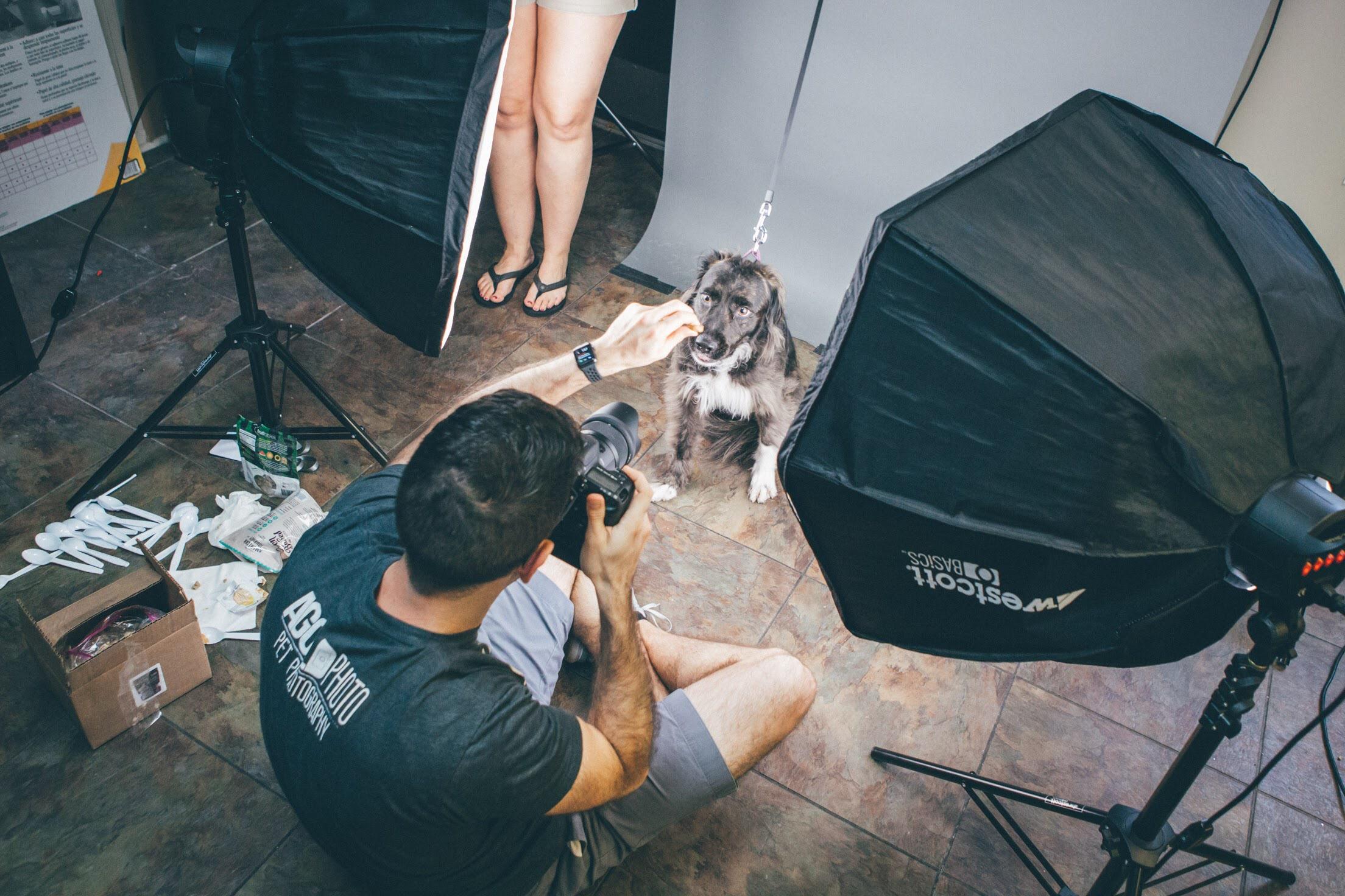 2019 Pet Photo Shoot Fundraiser Road Trip