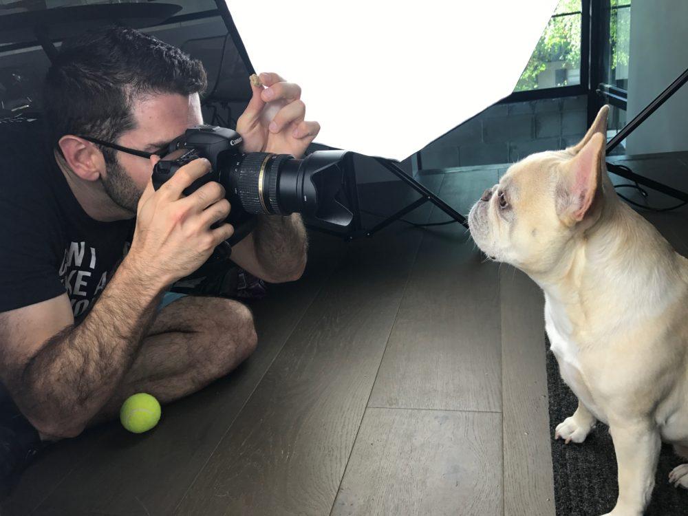 Win an In-Home Pet Photo Shoot