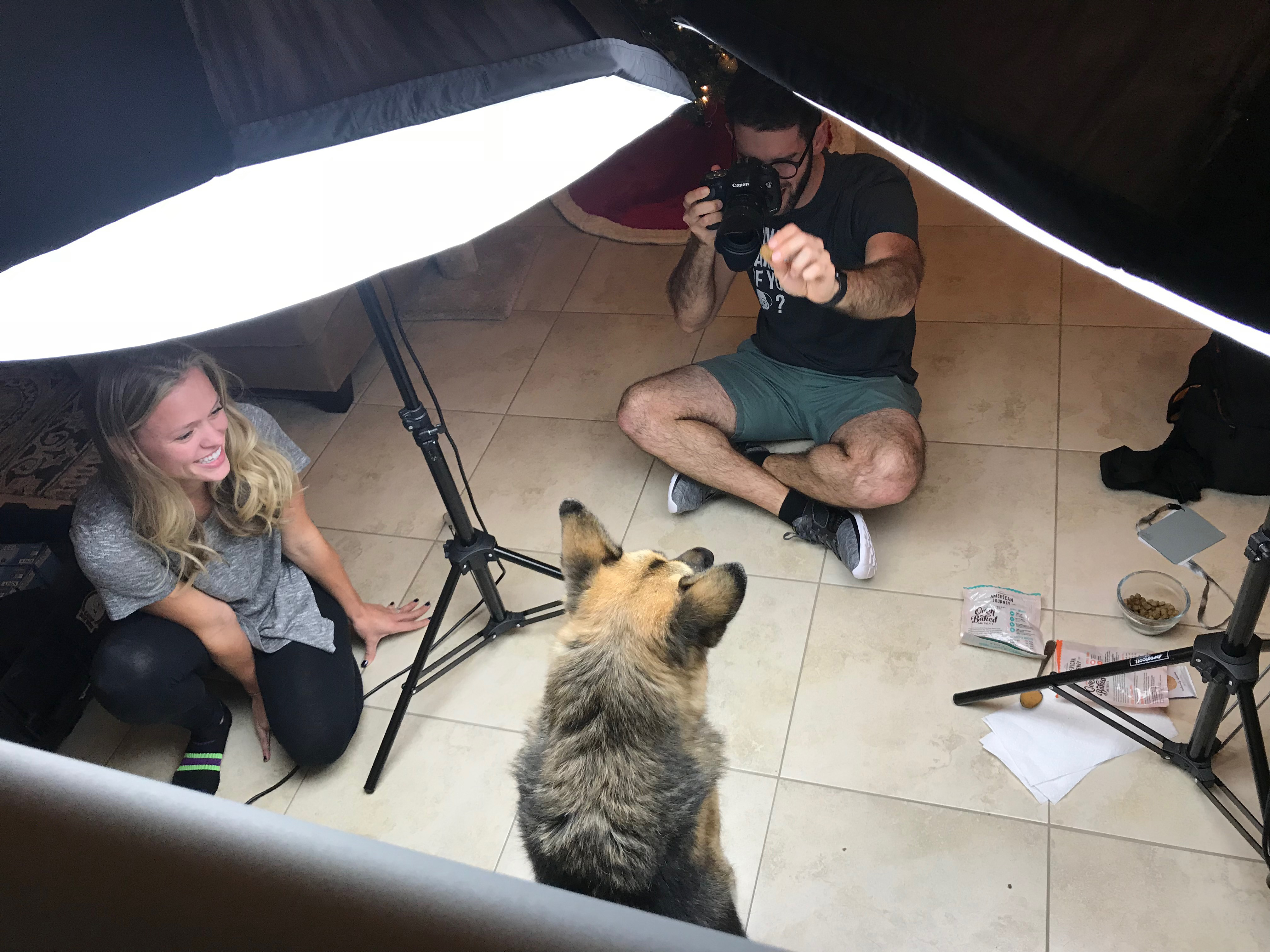 New Lower Pricing for In-Home Pet Photo Shoots