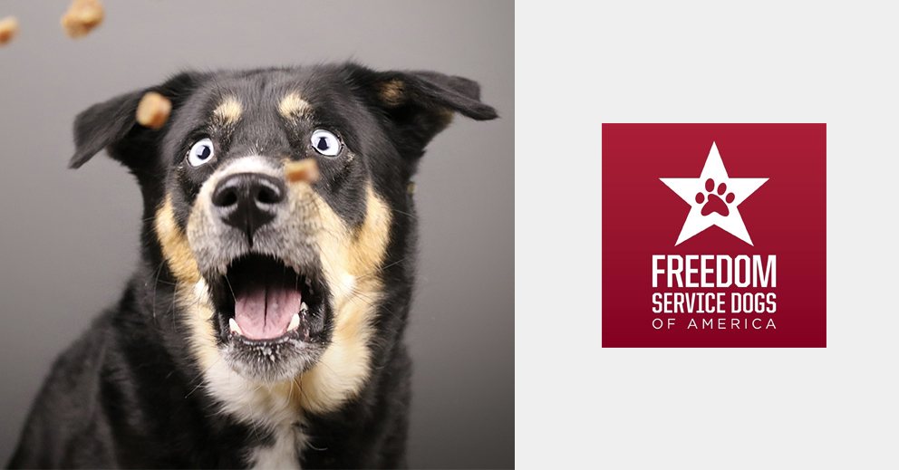 Pet Photo Shoot Fundraiser for Freedom Service Dogs