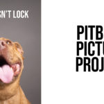 My Jaw Doesn't Lock – Pit Bull Awareness Month Poster