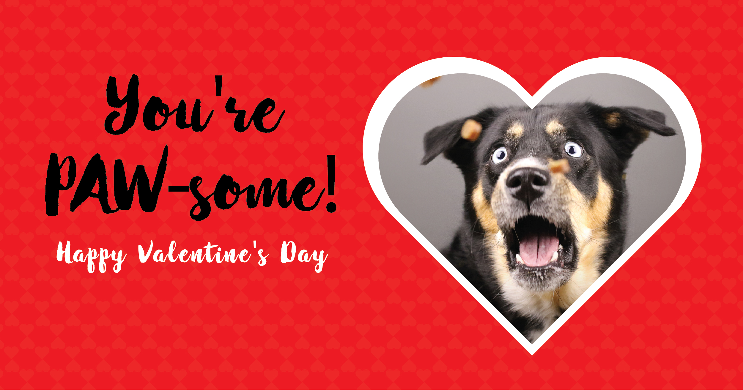 Free Pet  Valentine's Day Cards