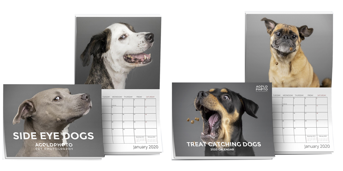 AGoldPhoto 2020 Wall Calendars – Only $23.99 (Shipping Included)