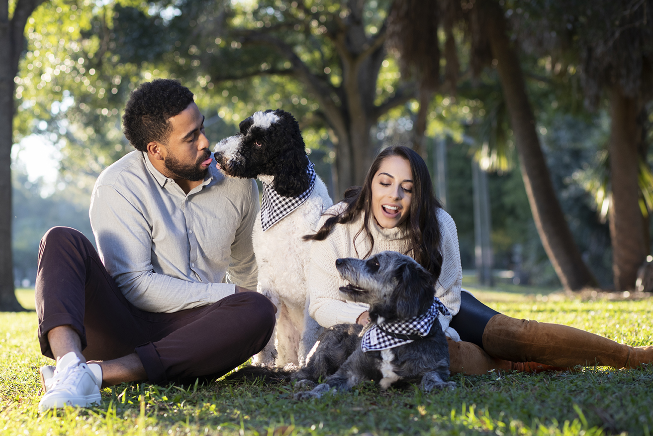 A Silly and Serious Tampa Pets and People Photo Shoot